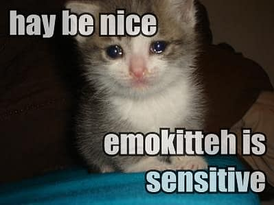 hay-be-nice-emokitteh-is-sensitive.jpg